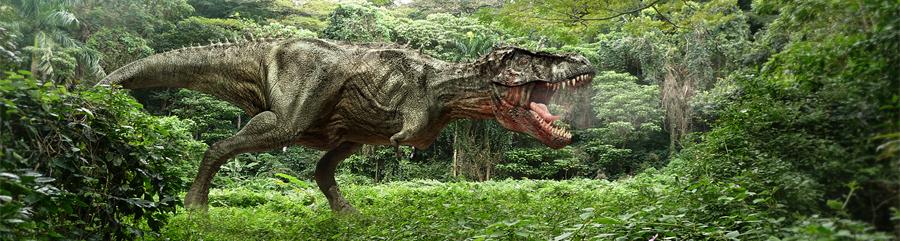 Przyjęcie dinozaury